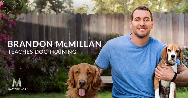 Brandon McMillian Teaches Dog Training